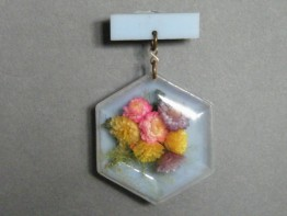 #1257 Perspex and Plastic Flower Brooch, circa 1940 - 1955 **SOLD** through our Liverpool shop 2016