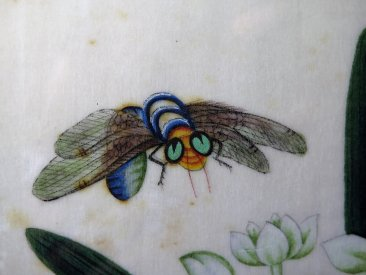 "#1749  Chinese Export  Insect & Flower Pith / ""Rice"" Paper Painting, 19th Century  **Sold**  May 2019"